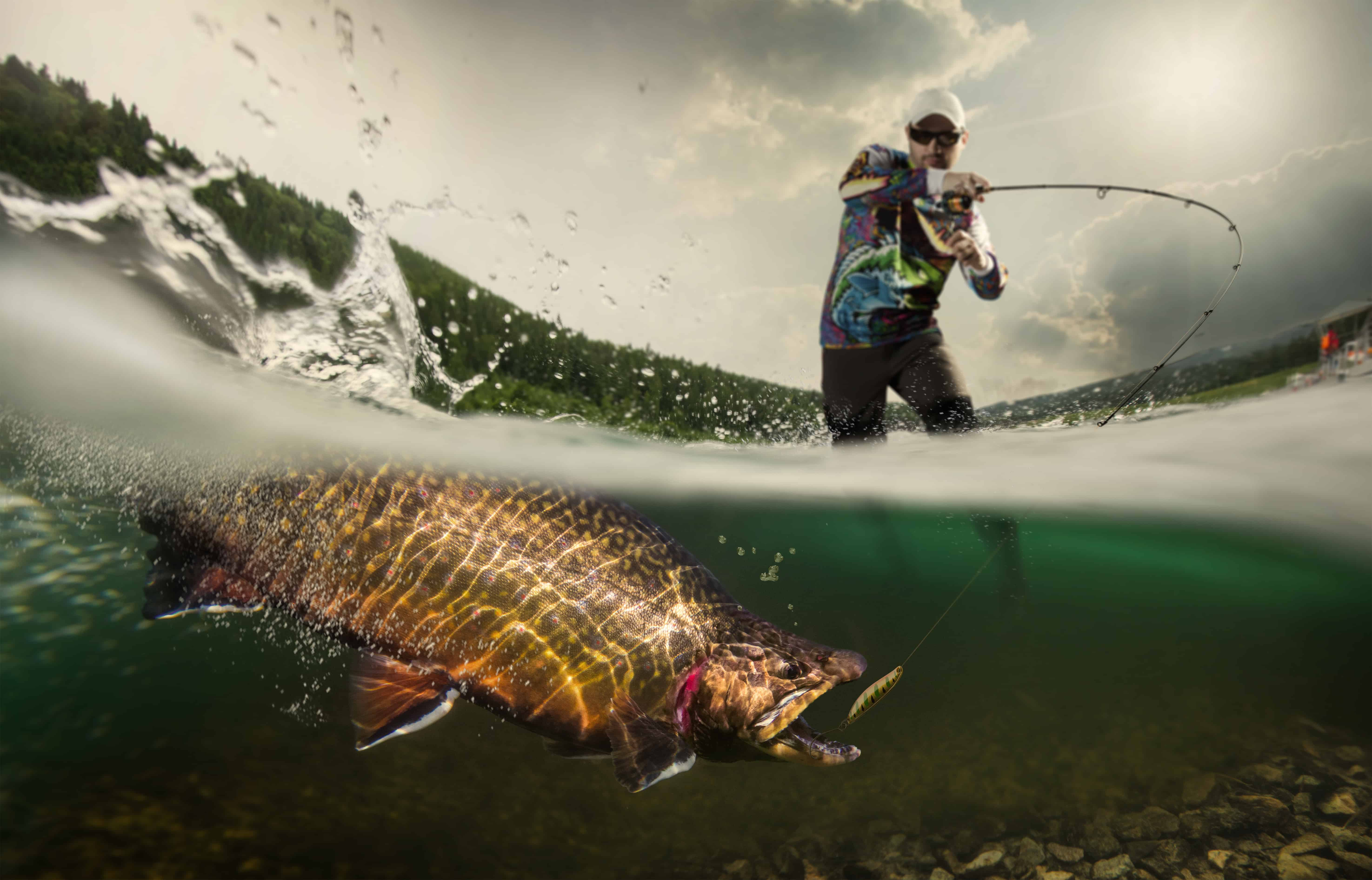 Fishing. Fisherman and trout, underwater view